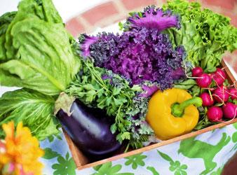 Lebensmittel Nr. 1: Gemüse